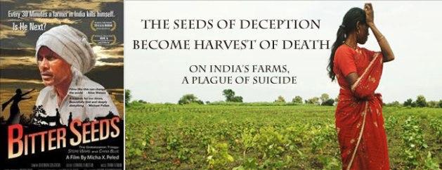 GMO-seeds-India.jpg